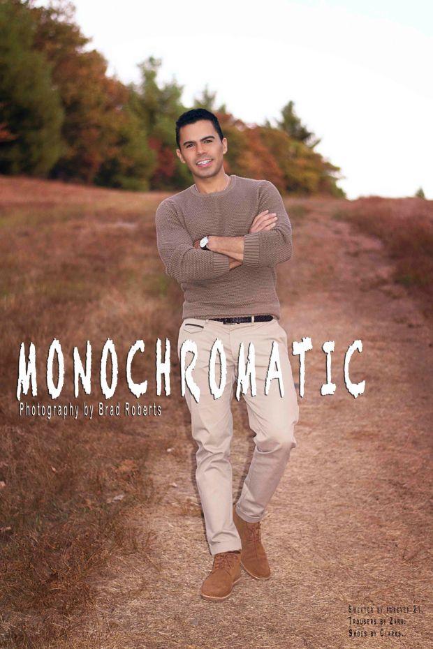 Monochromatic Cover